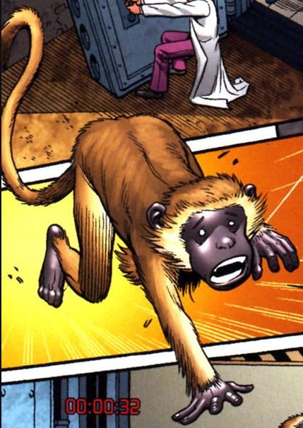 Monkey (Earth-20051)