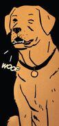 Lucky (Earth-616) from Hawkeye Vol 5 7 001