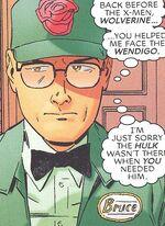 Bruce Banner (Earth-161)