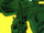 Skord (Earth-616)
