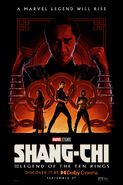 Shang-Chi and the Legend of the Ten Rings poster 013
