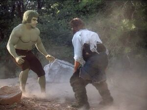 David Banner (Earth-400005) and Harlan Bates(Earth-400005) from The Incredible Hulk (TV series) Season 2 2 001.jpg