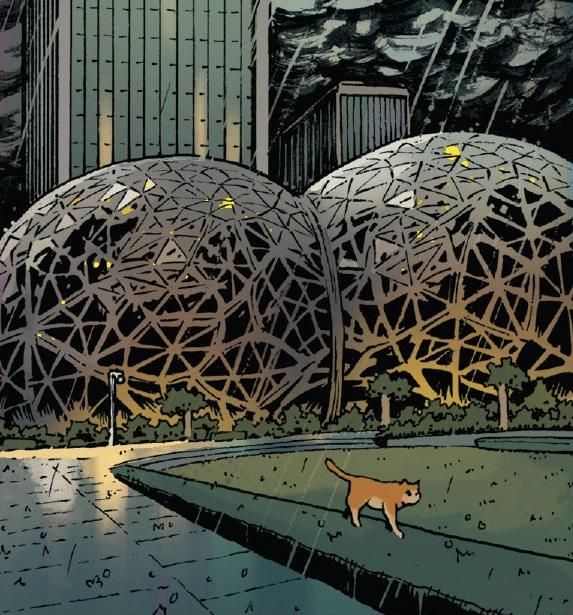 Amazon Spheres