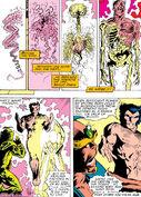 James Howlett (Earth-616) from X-Men Annual Vol 1 11 0001
