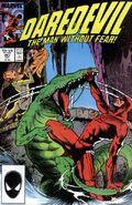 Daredevil Vol 1 247