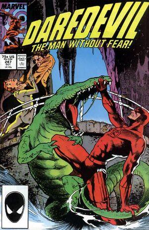 Daredevil Vol 1 247.jpg