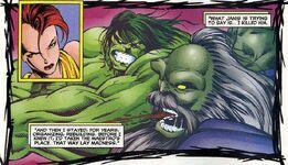 Bruce Banner (Maestro) (Earth-9722)