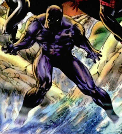 T'Challa (Earth-13519)