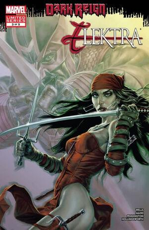 Dark Reign Elektra Vol 1 3.jpg