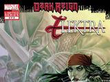 Dark Reign: Elektra Vol 1 3