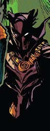 T'Challa (Earth-TRN713)