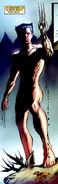 James Howlett (Earth-616) from X-Men Origins Wolverine Vol 1 1 0001