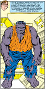 Bruce Banner (Earth-616) from Incredible Hulk Vol 1 318 002