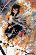 Daredevil Vol 2 14 Textless