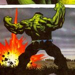 Bruce Banner (Earth-9828)