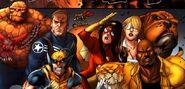 Avengers (Earth-97161) from Avengers vs. Pet Avengers Vol 1 2 001
