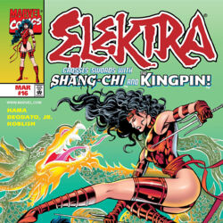 Elektra Vol 2 16