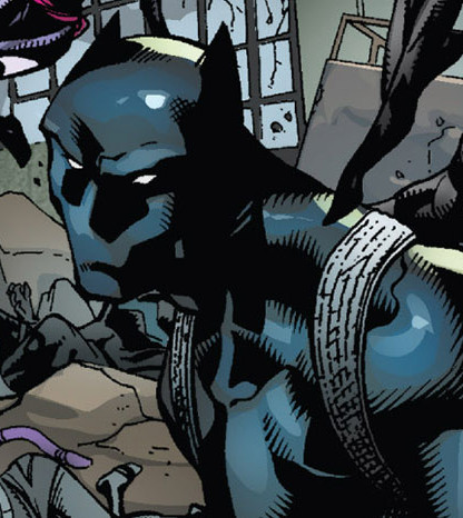 T'Challa (Earth-14110)