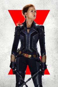 Black Widow (film) poster 012 textless.jpg