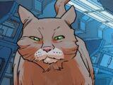 Doctor Shapiro (Earth-616)
