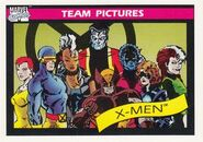 X-Men (Earth-616) from Marvel Universe Cards Series I 0002