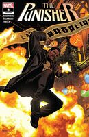 Punisher Vol 12 8