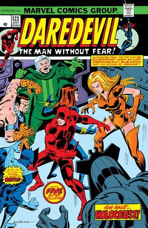 Daredevil Vol 1 123.jpg