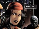 Elektra Natchios (Tierra-58163)