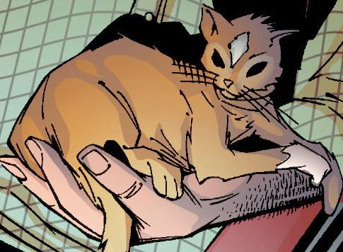 Mystique (Cat) (Earth-1610)