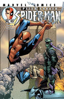 Peter Parker Spider-Man Vol 1 45