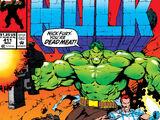 Incredible Hulk Vol 1 411