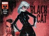 Black Cat Vol 1 7