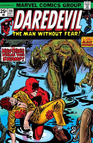 Daredevil Vol 1 114.jpg