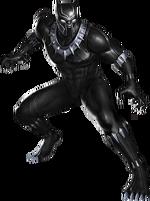 T'Challa (Earth-TRN789)