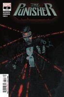 Punisher Vol 12 2