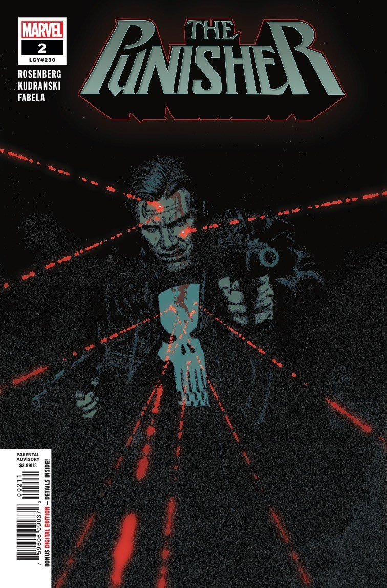 Punisher Vol 12 2