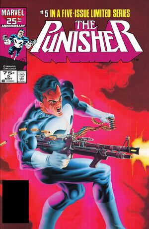 Punisher Vol 1 5.jpg