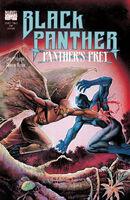 Black Panther Panther's Prey Vol 1 2