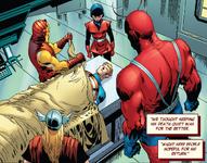 Avengers (Earth-81223)