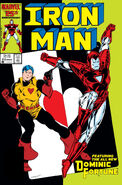 Iron Man Vol 1 213
