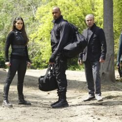 Marvel's Agents of S.H.I.E.L.D. Season 3 21