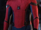 Peter Parker (Terra-199999)