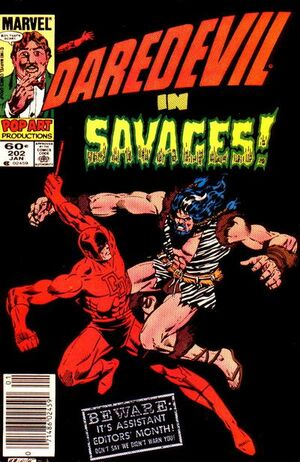 Daredevil Vol 1 202.jpg