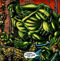 Bruce Banner (Earth-617) from Doc Samson Vol 2 4 0001.jpg
