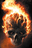 Ghost Rider Vol 5 2 Textless