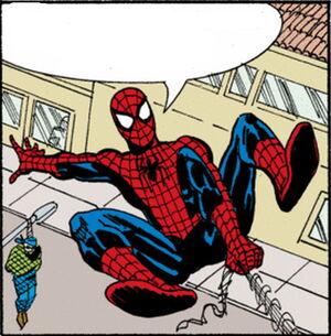 Spider-Man Newspaper Strips Vol 1 2007.jpg