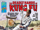Deadly Hands of Kung Fu Vol 1 21