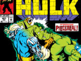 Incredible Hulk Vol 1 407