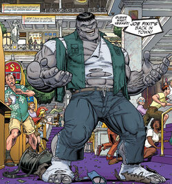 Bruce Banner (Earth-616) from Hulk Vol 2 7 0001.jpg