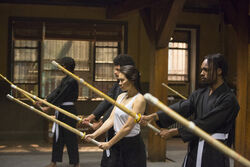 Chikara Dojo from Marvel's Iron Fist Season 1 1.jpg